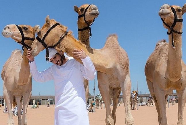 Немного о жизни наследника престола Арабских Эмиратов