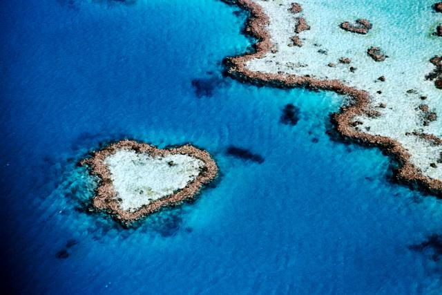 Самые интересные и посещаемые достопримечательности Австралии: 21 фото