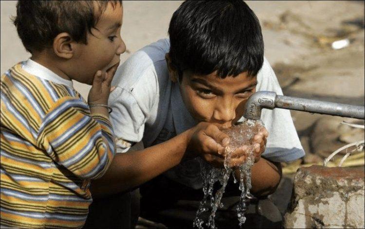 Уличная еда в Средней Азии: 20 шокирующих фото