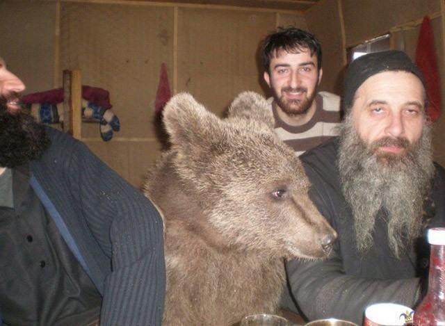 40 уморительных фото из России