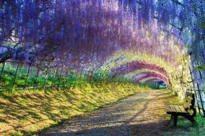 Самые красивые места на нашей планете, 55 фото